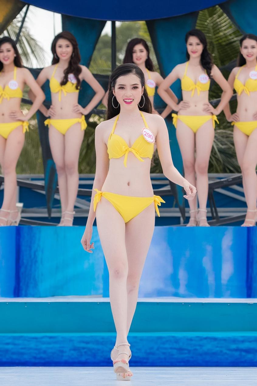 2 - Huynh Thuy Vi SBD 290a