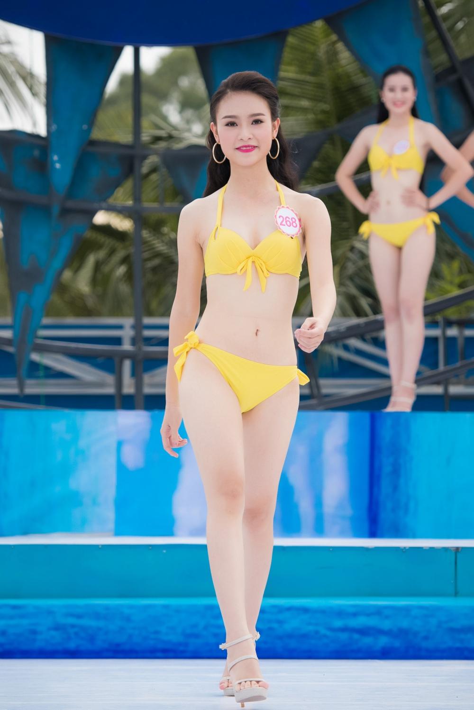 24 - Phung Bao Ngoc Van SBD 268 a